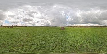 Огромное поле в Анучинском районе